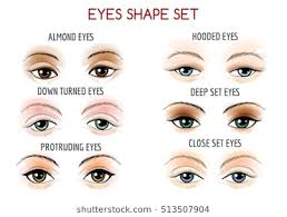 set of eyes shape diffe shapes close set wide set protruding on