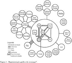 Ecomap Google Search Ecomaps Social Work Social Work Practice