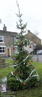 are these the worst christmas trees in britain council does such