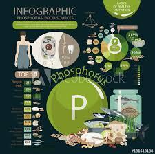Phosphorus Food Chart