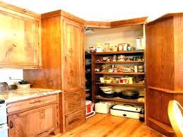 kitchen blind corner shelf rev a cabinet shelves amusing cabinets s