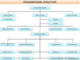 List Of Samples Of Multi Purpose Cooperative Organizational