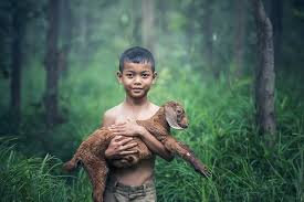 Image result for hold baby animal