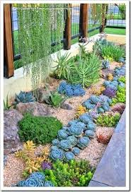 Small Picture The 25 best Succulent frame ideas on Pinterest Succulent wall