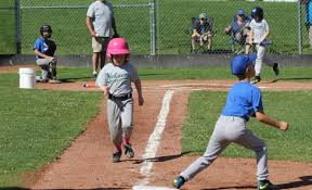 Nelson Baseball cancels spring season, NYS delays return | The Nelson Daily
