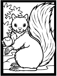 Small Picture Fall Coloring Page Squirrel Free printable and Craft