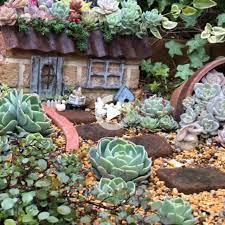 succulent landscaping front yard