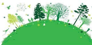 Порушення діючого законодавства у сфері охорони навколишнього природного середовища