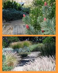 Small Picture Best 10 Native gardens ideas on Pinterest Australian garden