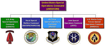 Jsoc Organization Chart Why The U S Military Is Woefully Unprepared For A Major