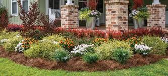 maintaining an edge garden borders for