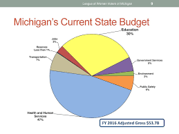 Lwvmi Government Finance Study Ppt Video Online Download