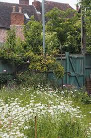mini meadow garden