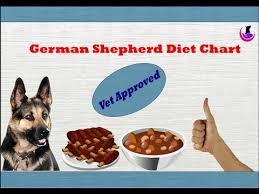 German Shepherd Diet Chart Vet Approved