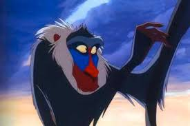 mandrill rafiki. yet another lion king character, rafiki (whose name means \u201cfriend\u201d in swahilli) does not actually belong to any real species. he is officially referred mandrill