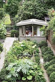 in the garden of henrietta courtauld s 1850s london terraced house yew surround the main bed which is planted with vegetables melianthus major and