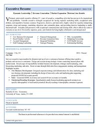 Executive Resumes Templates Custom Executive Resumes Templates] 48 Images Executive Resume