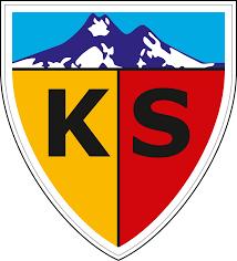 Kayserispor   FIFA Football Gaming wiki
