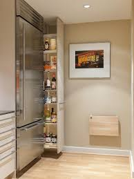 perfect slim pull out cabinet next to fridge what else would you