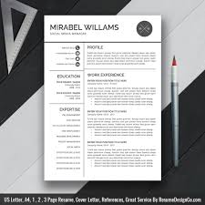 Professional Resume Template Word Resume Simple Cv Template