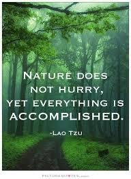 Philosophie Zitate Natur