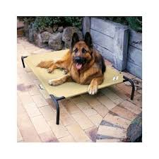 extra large pet beds.  Large Coolaroo Extra Large Dog Bed Elevated Pet Beds Luxury Raised Mat Pad Cot XXL   EBay With