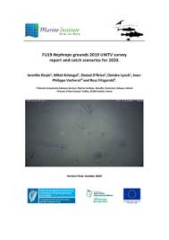 Survey Report Fu19 Nephrops Grounds 2019 Uwtv Survey Report And Catch