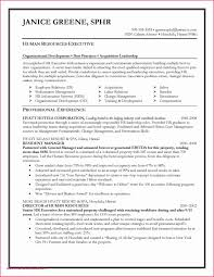 26 Elegant Photograph Of Information Technology Entry Level Resume