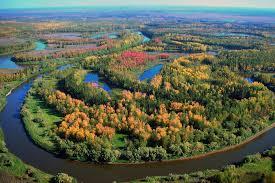Газпром добыча Уренгой ООО  Специалисты ООО Газпром добыча Уренгой принимают необходимые действия для сохранения экологического равновесия в регионе