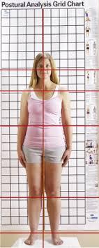 Assessment Musculoskeletal Key