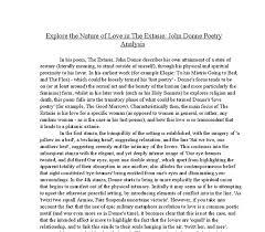 essay poems poetry explication essay