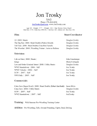 Resume Format Computer Skills Network Engineer Sample Free