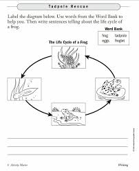94 best Frogs images on Pinterest   Frog and toad  Frog life in addition  additionally toddler science worksheets   Google Search   Montessori as well  likewise Frog Life Cycle Wheel  Students will use the wheel to show how moreover Kindergarten Science  Frogs furthermore  further Life Cycle of a Frog – Free 5th Grade Science Worksheet likewise 44 best frog images on Pinterest   Frogs  Life science and Anatomy in addition Do this with Frog and Toad Together on lifecycles   1st grade as well 29 best Frog  Toad images on Pinterest   Frog and toad  Arnold. on science frog worksheet