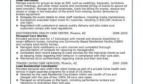 Examples Of Resumes For Nurses And Hospital Volunteer Resume Example
