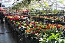 2016 national floriculture forum focuses on marketing initiatives