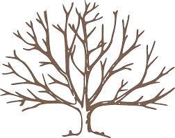 best 10 mantenimiento de jardines ideas on pinterest plantas de Low Maintenance Houseplants aprenderemos hoy a diferenciar las diferentes partes del árbol frutal para la low maintenance house plants pictures