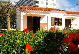 Ingles Floral Very Floral Picture Of Santa Clara Bungalows Playa Del