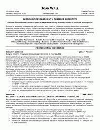 Non Profit Executive Director Resume Samples Perfect Resume Format