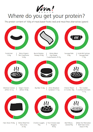 Protein Comparison Poster Resources Viva Health