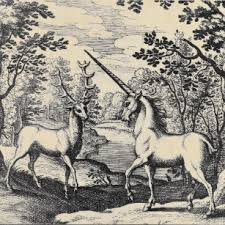 Image result for Alchemical unicorn