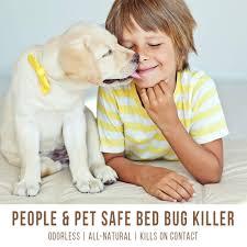 Download Eco Bed Bug Killer  PNG