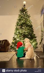 Two Smiling Little Girls Decorating Christmas Decorations On New At Home Christmas Tree