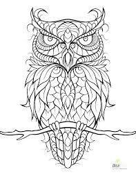 Owl Coloring Pages Colored At Getdrawingscom Free For Personal