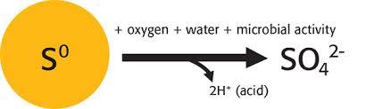 Oxidation Of Elemental Sulfur In Soils Mosaic Crop Nutrition