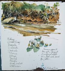 Cathy Johnson--Art, Life, and other Oddities | Watercolor journal, Travel  art journal, Watercolor sketch