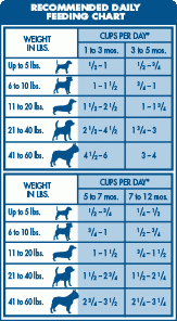 Fromm Puppy Feeding Chart 19 Blue Buffalo Homestyle Recipe Chicken Dinner Canned Dog
