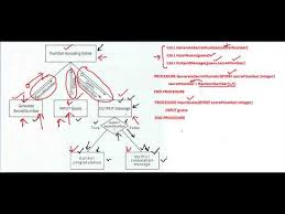 Flowchart And Structure Chart Structure Chart Pseudocode And Flowchart