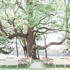 enchanting wedding venues in michigan