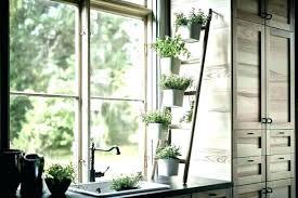 kitchen window herb garden