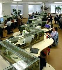 aquarium office. Office Fish Aquarium Desk Tank And Photo 3 Of 8 .
